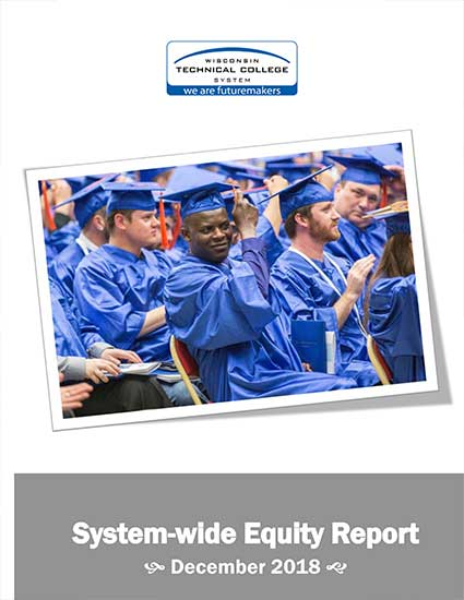 System wide Equity Report Publication Cover Image